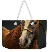 Soft Focus Horse Weekender Tote Bag