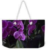 Some Very Beautiful Purple Colored Orchid Flowers Inside The Jurong Bird Park Weekender Tote Bag