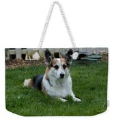 Something Has His Attention Weekender Tote Bag