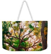 Somewhere In Bolingbrook Illinois Weekender Tote Bag