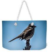 Song Sparrow On Top Of Branch Weekender Tote Bag