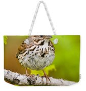 Song Sparrow Pictures 132 Weekender Tote Bag