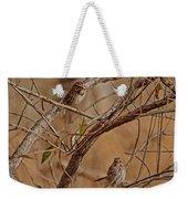 Song Sparrows Weekender Tote Bag