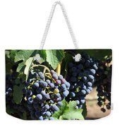 Sonoma Vineyards In The Sonoma California Wine Country 5d24630 Square Weekender Tote Bag