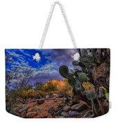Sonoran Desert 54 Weekender Tote Bag