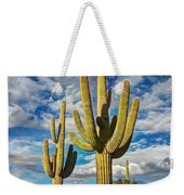 Sonoran Desert Beauty Weekender Tote Bag