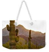 Sonoran Desert II Weekender Tote Bag by Robert Bales