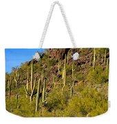 Sonoran Desert West Saguaro National Park Weekender Tote Bag