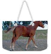 Sorrel Yearling Weekender Tote Bag
