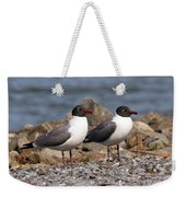 Mr. And Mrs. Laughing Gull  Weekender Tote Bag