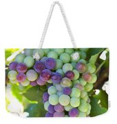 South Africa, Scenes At Constantia Weekender Tote Bag