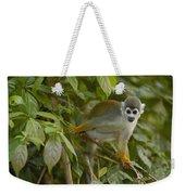 South American Squirrel Monkey Amazonia Weekender Tote Bag