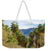 South Side View Of Andreas Canyon Trail In Indian Canyons-ca Weekender Tote Bag