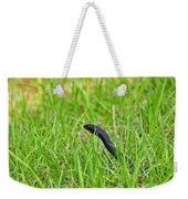 Southern Black Racer Weekender Tote Bag by Al Powell Photography USA