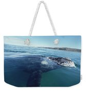 Southern Right Whale At Surface Weekender Tote Bag