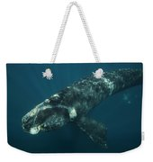 Southern Right Whale Calf Valdes Weekender Tote Bag