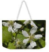 Southern Sawtooth Highbush Blackberry Blossoms - Rubus Argutus Weekender Tote Bag