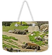 Southern White Rhinoceros In San Diego Zoo Safari Park In Escondido-california Weekender Tote Bag