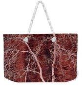 Southwest Texture Weekender Tote Bag
