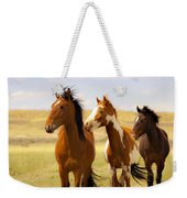 Southwest Wild Horses On Navajo Indian Reservation Weekender Tote Bag