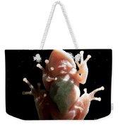 Space Frog Weekender Tote Bag