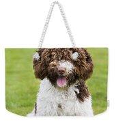 Spanish Water Dog Weekender Tote Bag