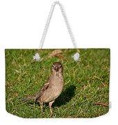 Sparrow 1 Weekender Tote Bag