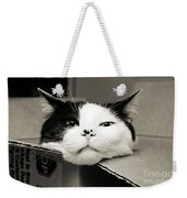 Special Delivery It's Pepper The Cat  Weekender Tote Bag