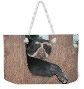 Spectacled Bear In Andean Foothills Peru Weekender Tote Bag