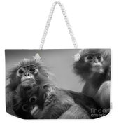 Spectacled Langur Family Weekender Tote Bag