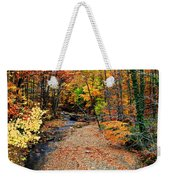 Spectrum Of Color Weekender Tote Bag by Frozen in Time Fine Art Photography