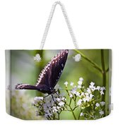 Spicebrush Swallowtail Butterfly Weekender Tote Bag