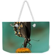 Spicebush Swallowtail Butterfly - Papilio Troilus Weekender Tote Bag