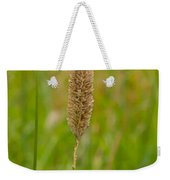 Spider's Grass Staircase Weekender Tote Bag