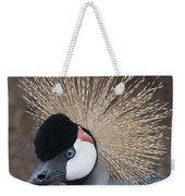 Spikey Feathers-closeup Weekender Tote Bag