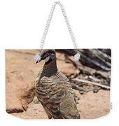 Spinifex Pigeon V3 Weekender Tote Bag