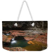 Spinning Leaves  Weekender Tote Bag