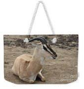 Spiral Horned Antelope Weekender Tote Bag