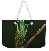 Spiritualism In Nature... Weekender Tote Bag