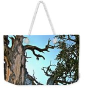 Spooky Bristlecone Pine At Spectra Point On Ramparts Trail In Cedar Breaks National Monument-utah  Weekender Tote Bag