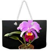 Spotlight On Purple Potted Cattleya Orchid Weekender Tote Bag