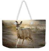 Spotlighted Mule Deer Weekender Tote Bag