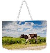 Calf Walking In Natural Landscape  Weekender Tote Bag