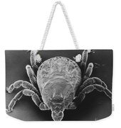 Spotted Fever Tick Weekender Tote Bag