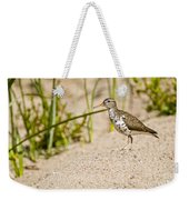 Spotted Sandpiper Pictures 45 Weekender Tote Bag
