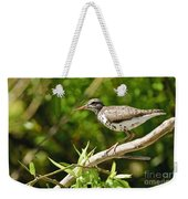 Spotted Sandpiper Pictures 48 Weekender Tote Bag