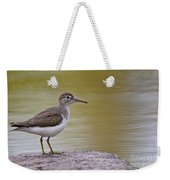 Spotted Sandpiper Pictures 51 Weekender Tote Bag