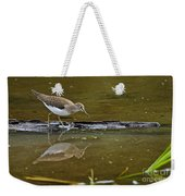Spotted Sandpiper Pictures 61 Weekender Tote Bag
