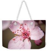 Spring Blooms 6697 Weekender Tote Bag