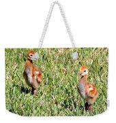 Spring Chicks  Weekender Tote Bag